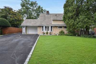 Levittown Single Family Home For Sale: 271 Blacksmith Rd
