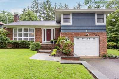 Oyster Bay Single Family Home For Sale: 1a Agnes St