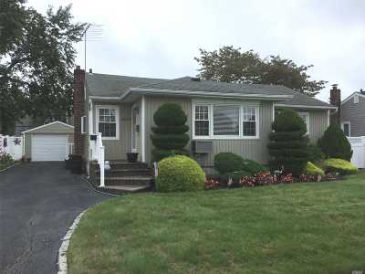 Westbury Single Family Home For Sale: 802 Pleasant Ave