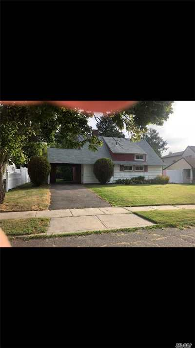 Levittown Single Family Home For Sale: 33 Branch Ln