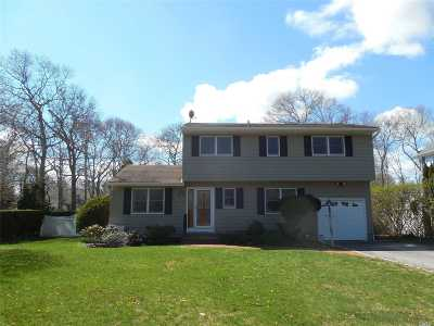 Hampton Bays Single Family Home For Sale: 28 Maryland Blvd