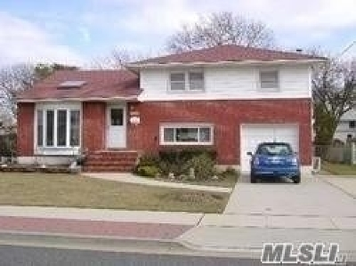 Freeport Single Family Home For Sale: 455 Roosevelt Ave