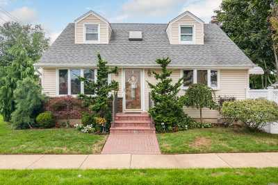 Lynbrook Single Family Home For Sale: 133 Chestnut St