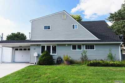 Westbury Single Family Home For Sale: 58 Prince Ln
