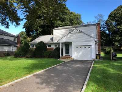 Syosset Single Family Home For Sale: 19a N Hillside Ln