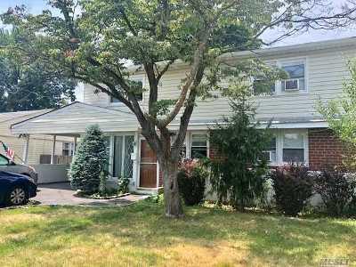 Nassau County Single Family Home For Sale: 176 Elmwood St