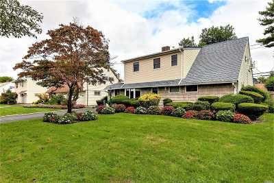 Hicksville Single Family Home For Sale: 17 April Ln