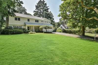 Port Washington Single Family Home For Sale: 8 Terrace Dr