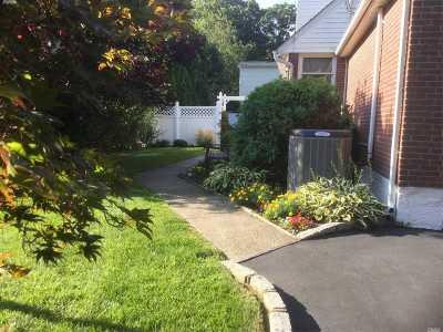 Shoreham Single Family Home For Sale: 29 Miller Ave