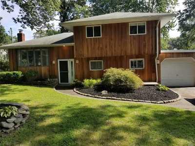 Lake Grove Single Family Home For Sale: 95 Elliot Ave