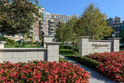 Garden City Condo/Townhouse For Sale: 111 Cherry Valley Ave #M21