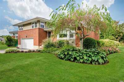Hicksville Single Family Home For Sale: 18 Balsam Dr