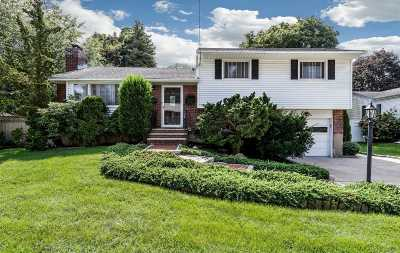 Syosset Single Family Home For Sale: 46 Sherman Dr