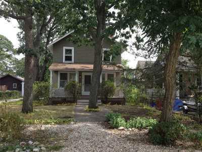 Nassau County Single Family Home For Sale: 9 Monroe Ave