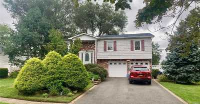 Smithtown Single Family Home For Sale: 33 E Hill Dr