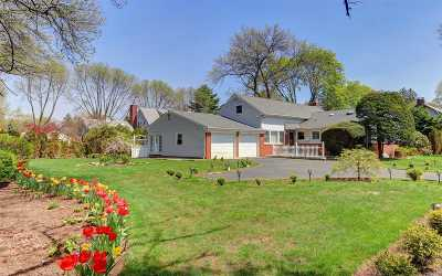 Garden City Single Family Home For Sale: 49 Meadow St