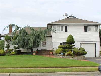 Massapequa Single Family Home For Sale: 512 Wright Dr