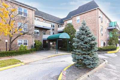 Lynbrook Condo/Townhouse For Sale: 570 Broadway #17B