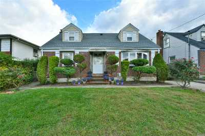 New Hyde Park Single Family Home For Sale: 182 Park Ave