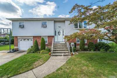 East Meadow Single Family Home For Sale: 466 Hilda St