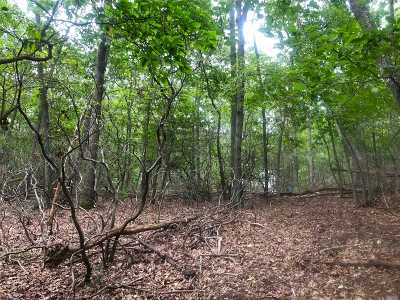 Sag Harbor Residential Lots & Land For Sale: 80 Clay Pit Rd