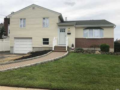 Massapequa Park Single Family Home For Sale: 466 Charles Ave