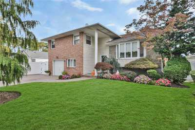 W. Hempstead Single Family Home For Sale: 397 Dogwood Ave