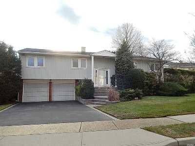 Plainview Single Family Home For Sale: 7 Pal Ct