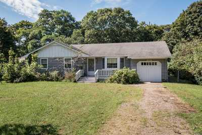 Bayport Single Family Home For Sale: 70 Fairview Ave