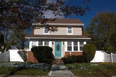 Freeport Single Family Home For Sale: 117 Lillian Ave