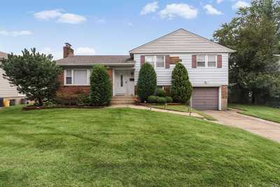 Plainview Single Family Home For Sale: 18 Agatha Dr