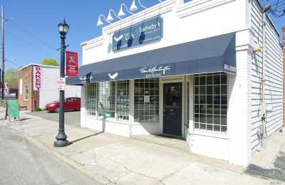St. James Commercial Lease For Lease: 499 Lake Ave