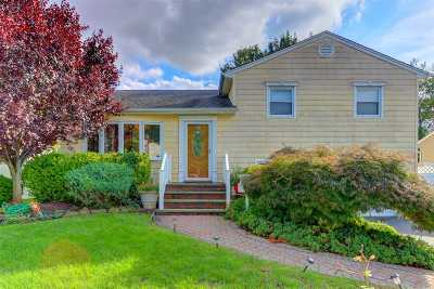 Westbury Single Family Home For Sale: 74 Murray Dr