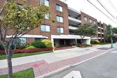 Lawrence Condo/Townhouse For Sale: 376 Central Ave #3B