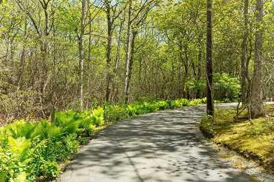 Sag Harbor Residential Lots & Land For Sale: 1802 Noyac Path