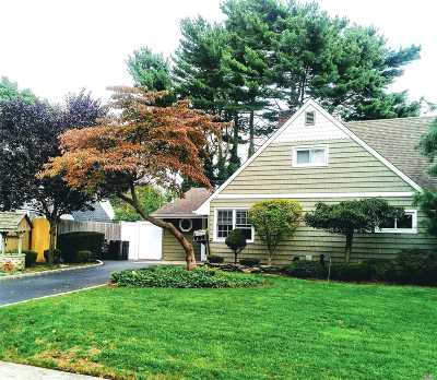 Westbury Single Family Home For Sale: 61 Lion Ln