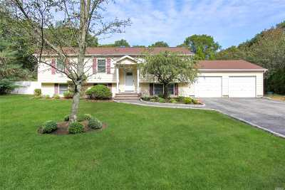 Medford Single Family Home For Sale: 49 Robinson Ave