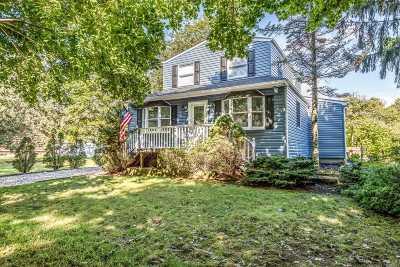 Islip Terrace Single Family Home For Sale: 79 Babylon St
