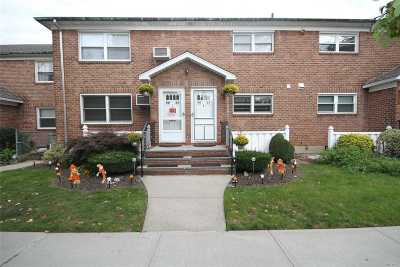 Fresh Meadows Condo/Townhouse For Sale: 56-33 175th Pl #B