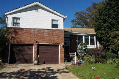 Baldwin Single Family Home For Sale: 951 Woodoak Dr