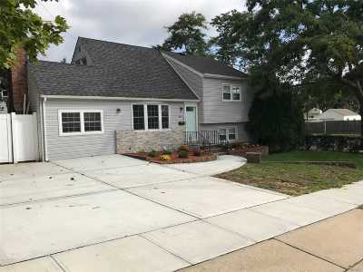 Bethpage Single Family Home For Sale: 3741 Stokes Ave