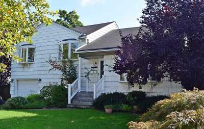 Wantagh Single Family Home For Sale: 527 Charles Ln