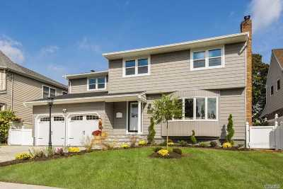 East Meadow Single Family Home For Sale: 2563 Ramona St