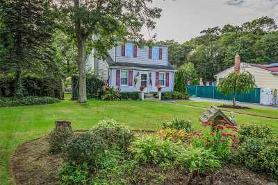 Patchogue Single Family Home For Sale: 82 Traction Blvd