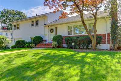 Garden City Single Family Home For Sale: 18 Plaza Rd