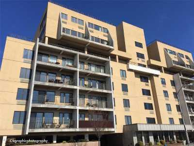 Rental For Rent: 235 W Park Ave #202