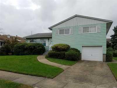 Hicksville Single Family Home For Sale: 24 Primrose Ave