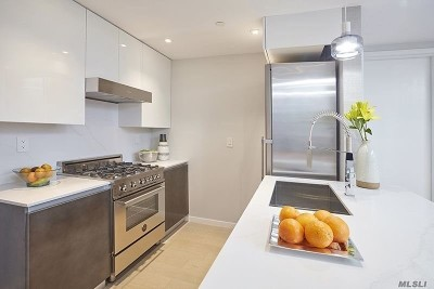 Long Island City Condo/Townhouse For Sale: 42-50 27 St #6A