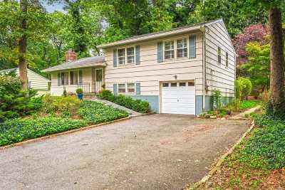 Huntington Single Family Home For Sale: 38 Vineyard Rd