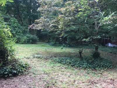 Dix Hills Residential Lots & Land For Sale: 27 Carman Rd